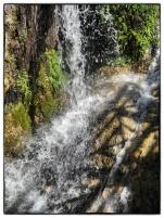 Callosa39_Snapseed